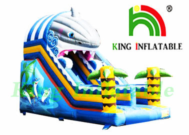 Single Lane 0.55mm PVC Tarpaulin Inflatable Dry Slide / CE Shark Inflatable Slide