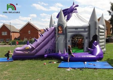 Good Quality Inflatable Water Parks & Purple / Grey Inflatable Jumping Castle With Dragon Slide Roofed Playground on sale