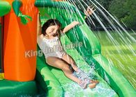 Tropical Play Center Jump Castle / Inflatable Water Slide For Kids In Summer