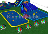 Customized Adults Giant Outdoor Inflatable Water Parks For Amusement Playground