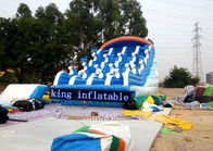 Fantasy Splendid Ocean Water Park / Outdoor Inflatable Water Slides With Cartoon Printing