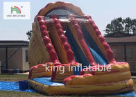 China Colorful Big Inflatable Dry Slide / Children 'S Bounce House With Slide factory