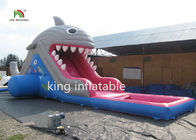 6m High Shark Inflatable Water Slide With Pool / Small Blow Up Slide For Kids