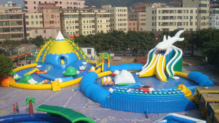 Giant Adults / Kids Inflatable Water Slide Pool for Funny Amusement Games