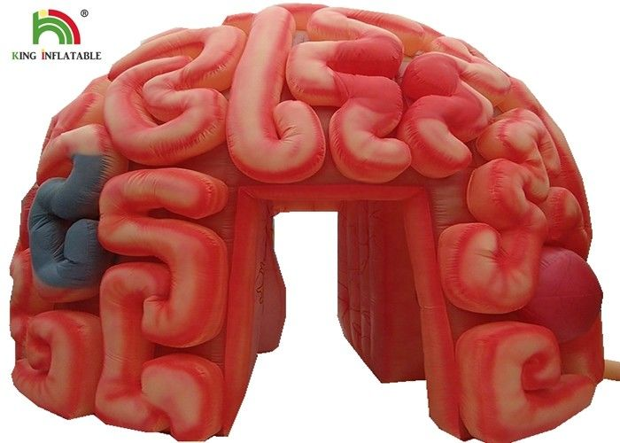 Giant 4m  Inflatable Brain Replica Artificial Organs For Educational SGS EN71