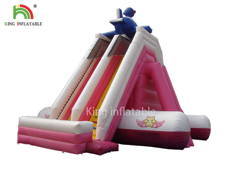 Customized Size Pink PVC Tarpaulin Inflatable Water Slide Outdoor Amusement Park For Kids