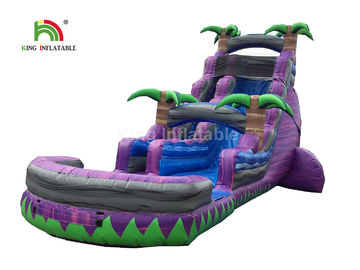 China Dual Lane 0.6mm PVC Inflatable Water Slide With Pool 30ft Purple For Summer factory