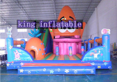PVC Colorful Inflatable Amusement Park With Slide For Children And Adults