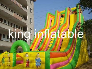 China Giant Double Lane Inflatable Dry Slide Colorful Cartoon Printing For Amusement Park factory