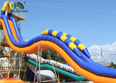 Seahorse Plato PVC Inflatable Water Slide / Yellow Blue Giant Water Slide For Rentals