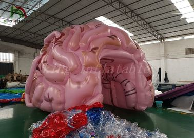 China Customized Size Inflatable Event Tent Simulation Brain Model For Medical Show factory