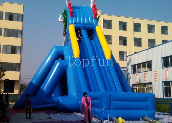 Giant Dragon Inflatable Water Slide Beach Slide With Pool For Kids And Adults
